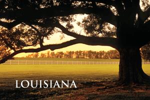 Louisiana-300x200