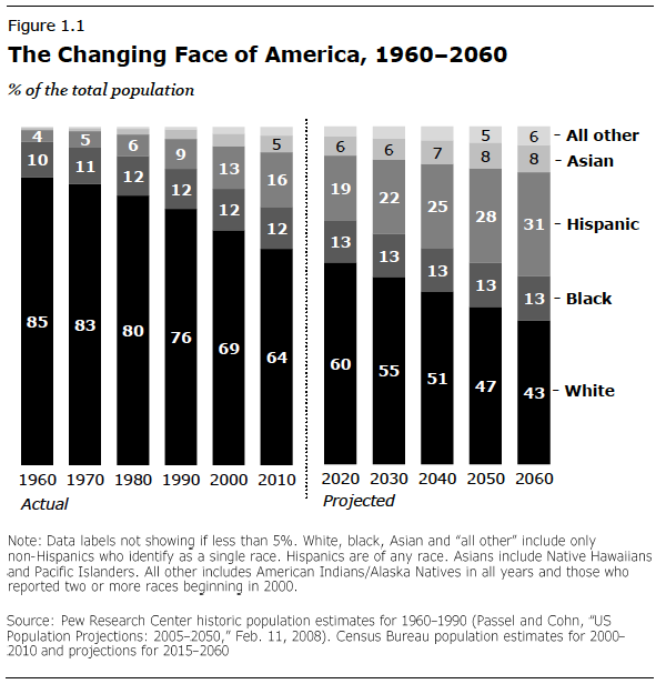 Chart of the changing U.S. racial/ethnic makeup