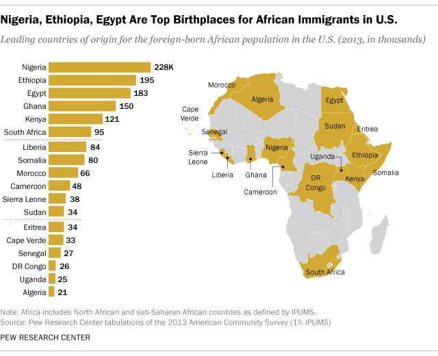 Nigeria, Ethiopia, Egypt Are Top Birthplaces for African Immigrants in U.S.