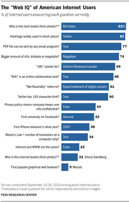 "The ""Web IQ"" of American Internet Users"