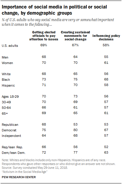 Importance of social media in political or social change, by demographic groups