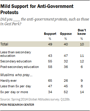 Mild Support for Anti-Government Protests