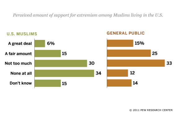Views of Support for Extremism