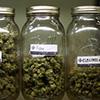 marijuana_jars