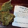 marijuana_prop215