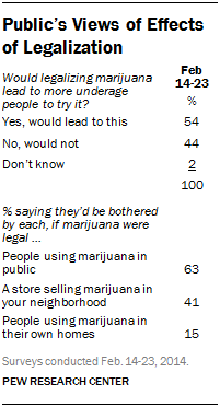 Public's Views of Effects of Legalization