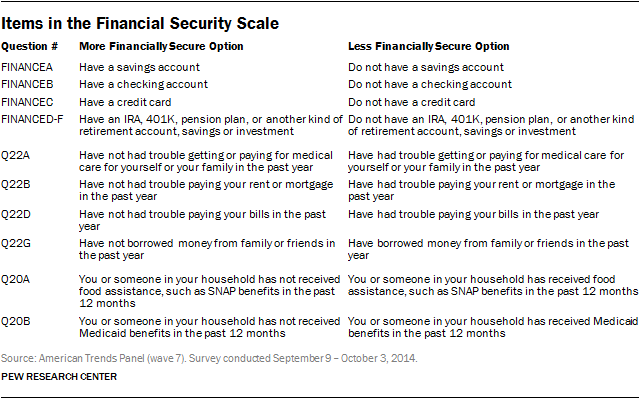 Items in the Financial Security Scale