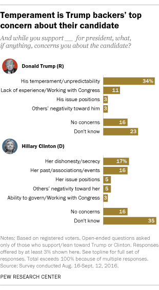 Temperament is Trump backers' top concern about their candidate