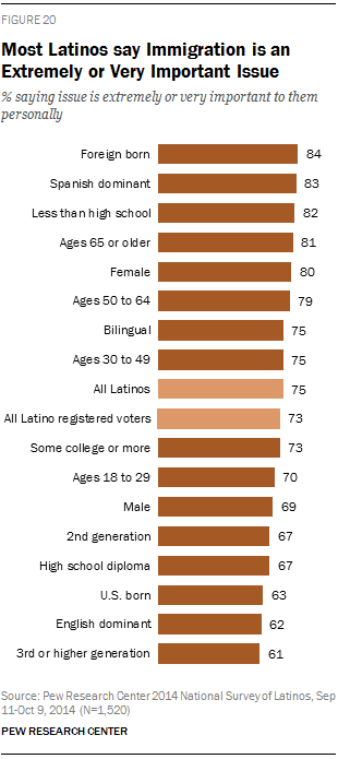 Most Latinos say Immigration is an Extremely or Very Important Issue