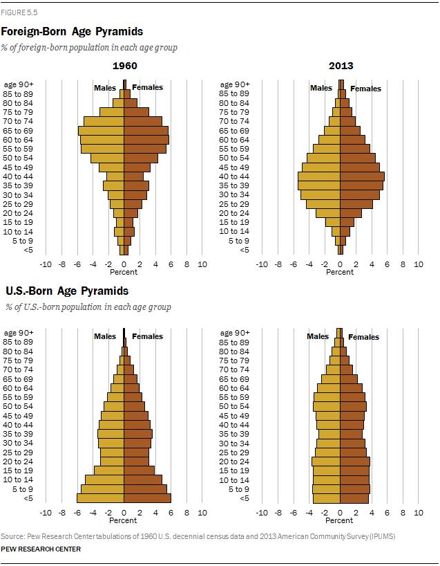 Foreign Born And U S Born Age Pyramids