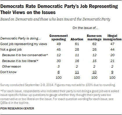 Democrats Rate Democratic Party's Job Representing Their Views on the Issues