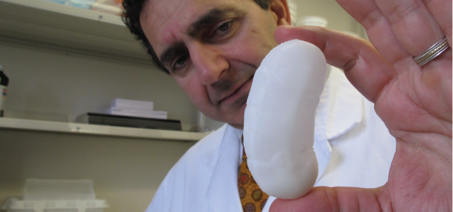 organ creation in lab pew report
