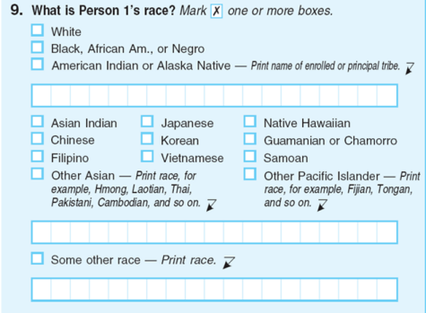 Race question on census form US census Some other race