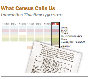 Census Bureau Race Interactive
