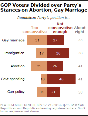 GOP Voters Divided over Party's Stances on Abortion, Gay Marriage