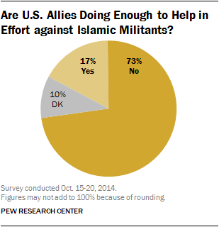 Are U.S. Allies Doing Enough to Help in Effort against Islamic Militants?
