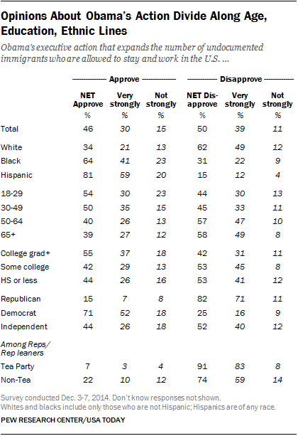 Opinions About Obama's Action Divide Along Age, Education, Ethnic Lines