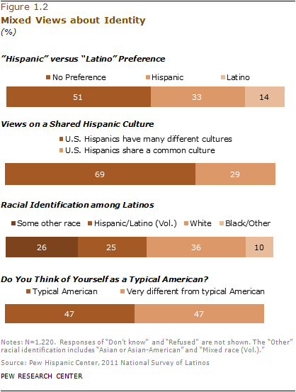 II  Identity, Pan-Ethnicity and Race | Pew Research Center
