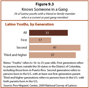 IX  Gangs, Fights and Prison | Pew Research Center