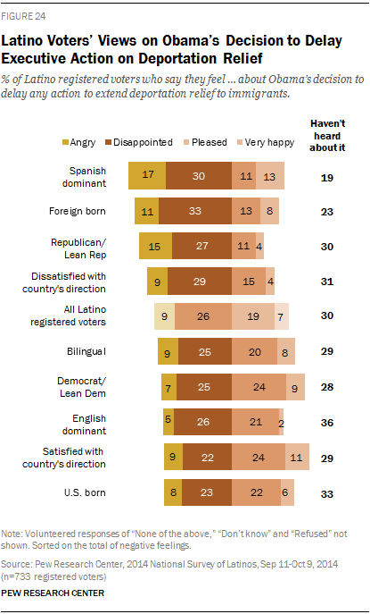 Latino Voters' Views on Obama's Decision to Delay Executive Action on Deportation Relief