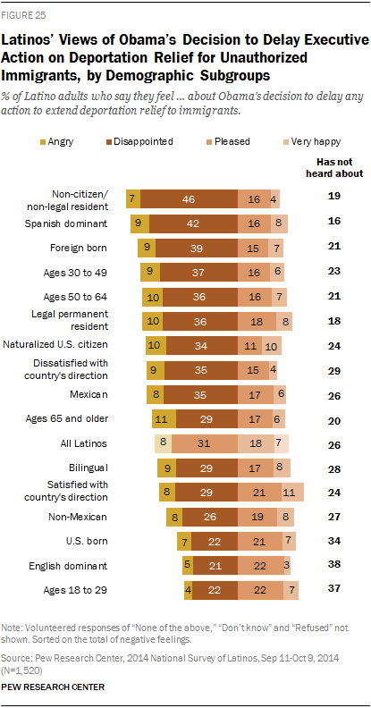 Latinos' Views of Obama's Decision to Delay Executive Action on Deportation Relief for Unauthorized Immigrants, by Demographic Subgroups